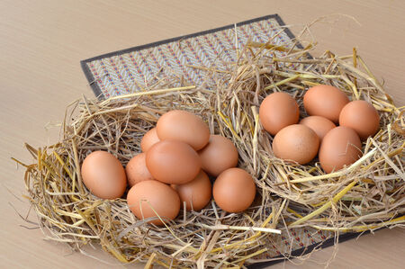 chicken eggs in rice straw on table photo