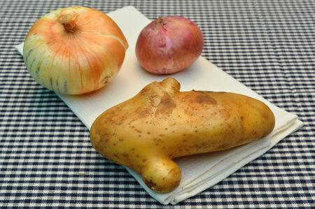 tela algodon: papa org�nica y la cebolla en el pa�o de algod�n en la cocina Foto de archivo