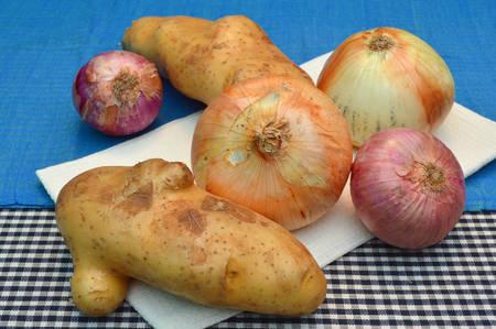 tela algodon: papas org�nicas y cebollas en un pa�o de algod�n en la cocina