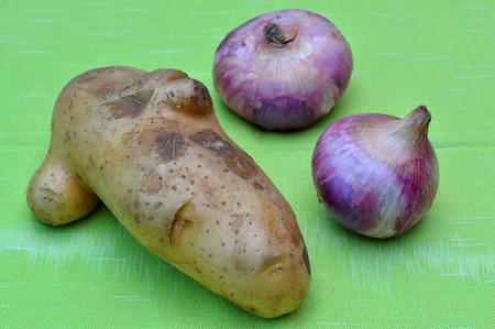 tela algodon: org�nico patata y la cebolla en el pa�o de algod�n en la cocina Foto de archivo