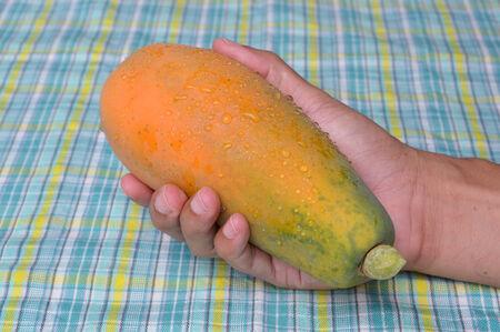 tela algodon: papaya madura en la mano del hombre en el fondo de tela de algod�n Foto de archivo