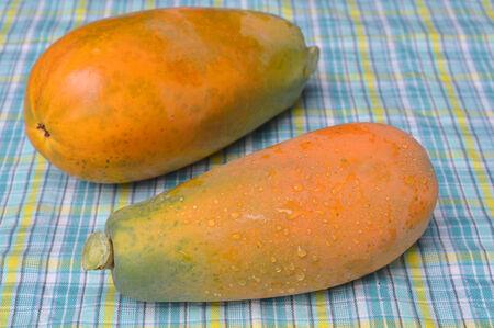 tela algodon: papaya madura sobre fondo de tela de algod�n
