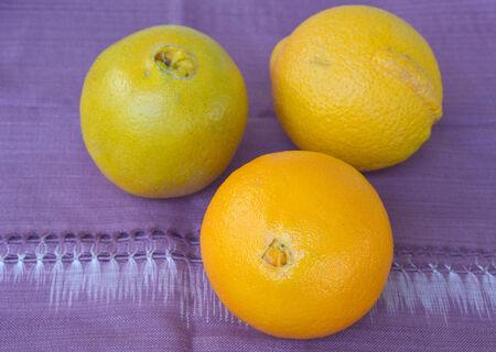 tela algodon: Naranjas en tela de algod�n violeta