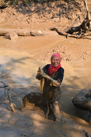 villager: YANGSRISURAT - APRIL 4 : Villager is catching fish in shallow pond in the dry season on April 4, 2015 in Yangsrisurat, Mahasarakham, Thailand. Editorial
