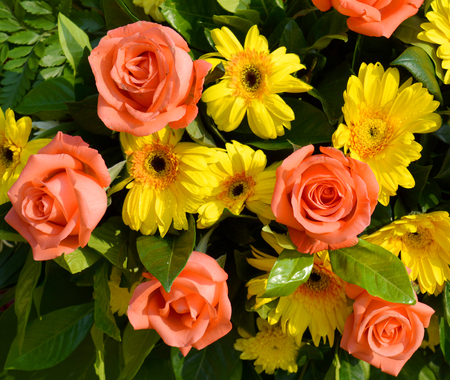 rosas naranjas: orange roses decorated in a funeral wreath