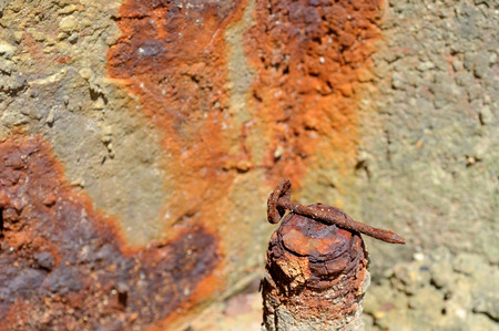 rusty nail: rusty headed nail on rusty piece of metal