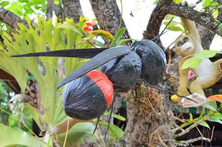wasp creative toy made of coconuts hung for home outdoors