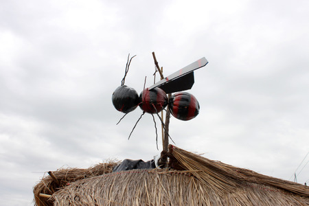 apocrita: wasp creative toy made of coconuts hung for home outdoors decoration and good luck in religious belief if wasp is living in someone home