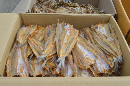 fishery products: pile of dried seafood in packed paper box for export