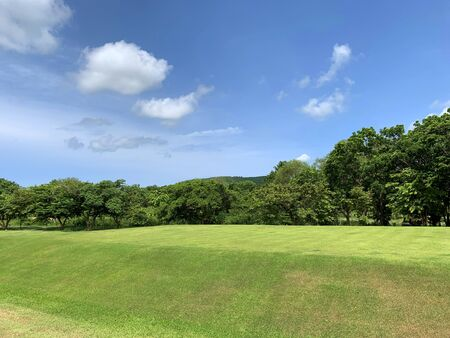 Blue sky and Beautiful green grass from golf ground Stockfoto