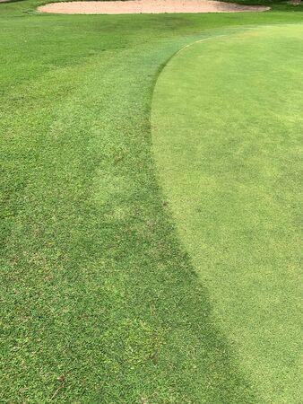 Achtergrond van ruw groen gras van golfgrond