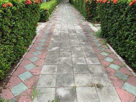 Modern style concrete walkway in the public garden