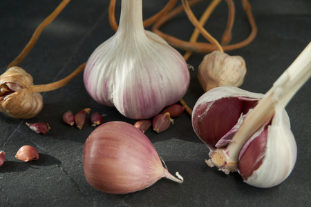 Garlic bulbs cloves and bulbil on dark stone background, growing garlic from cloves or bulbils concept