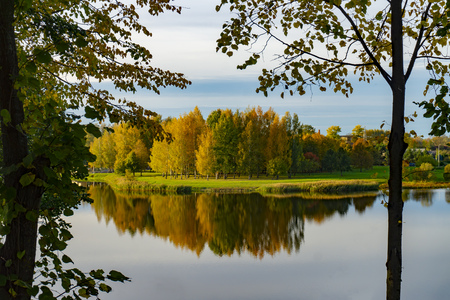 Tranquil autumn lake with reflections of trees with colorful foliage viewed past a trees branches and leaves