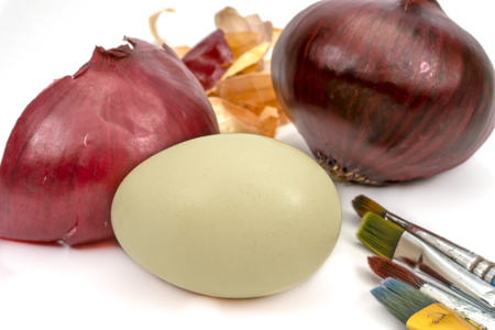 Egg fresh whole red onion and dried onion skin isolated on white. Easter eggs dyed with onion skins conceptual image