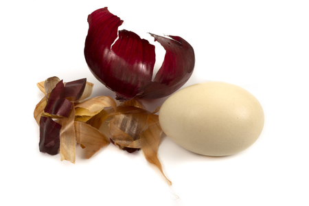 Egg and dried onion skin isolated on white. Easter eggs dyed with onion skins conceptual image Stock Photo
