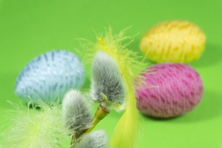 Willow buds, Easter eggs and feather in close-up as a set of decoration on spring theme in Christianity, placed on green background