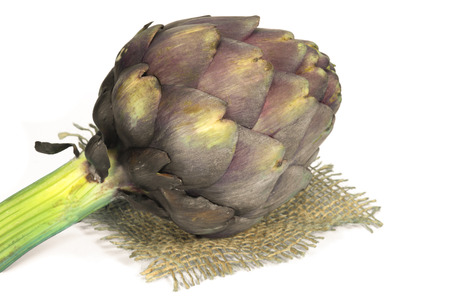 Purple fresh artichoke isolated on a white background. Asteraceae or Compositae family of flowering plant