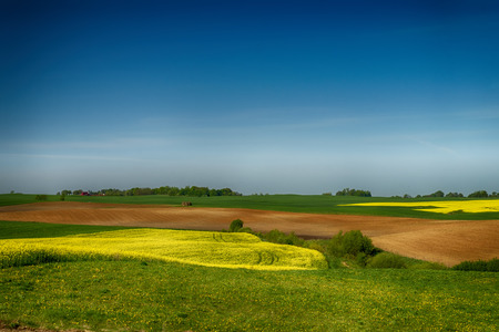 Agricultural landscape with rolling hills, ploughed farm field, meadow and a trees in a field