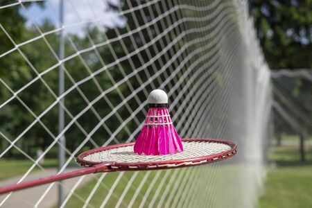 Pink feathered shuttlecock on racket with a badminton net