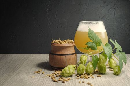 Branch of fresh hops on the plant with frothy beer or ale in a tall stemmed goblet behind and a container of barley seeds in a concept of making homemade or artisan beer