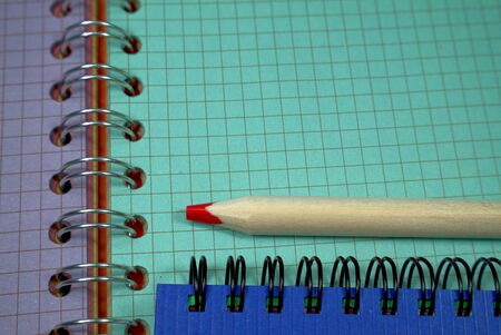 Pencil crayon lying on wire bound open notebook ruled with squares with green and purple pages in a conceptual image for business or education Reklamní fotografie