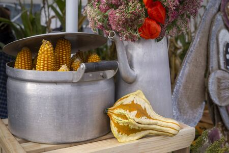 Autumn still life with dried corncobs in a metal pot and ornamental gourd in front of an old watering can filled with colorful flowers conceptual of the seasons