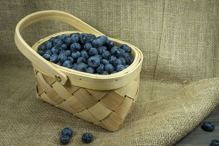 Fresh blueberries in a rustic woven basket on a sackcloth fabric