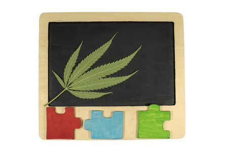Fresh green marijuana leaf on a blank school slate with wooden frame and colored wooden jigsaw puzzles pieces isolated on white background, cannabis education concept