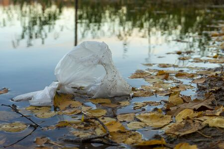 White plastic bag floating on calm water of pond among yellow leaves and with green grass and trees in background. Ecological pollution and a artificial litter contaminating environment concept Imagens