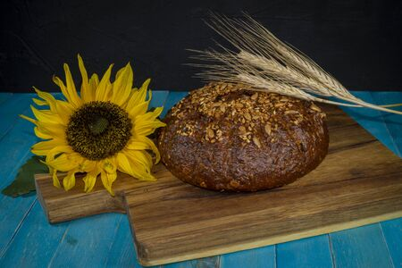 Sunflower, freshly baked loaf of bread and golden ears of wheat on wooden cutting board on a turquoise blue table Stockfoto