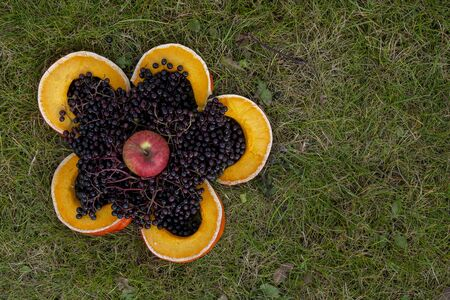 Fresh black berries and slices of yellow pumpkin forming big flower shape on the ground. Viewed from above with copy space. Harvest festival art object