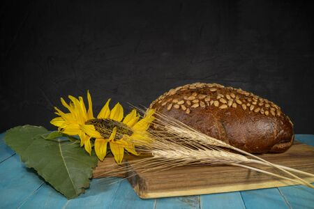 Sunflower, freshly baked loaf of bread and golden ears of wheat on wooden cutting board on a turquoise blue table Imagens