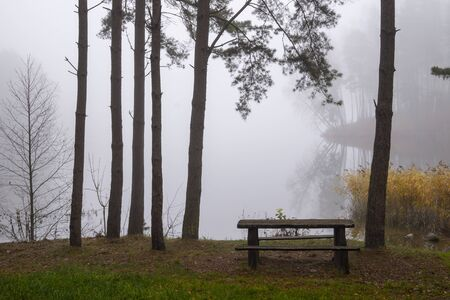 Picnic bench and table in a misty autumn park with colorful yellow leaves on the trees in an atmospheric landscape Stockfoto