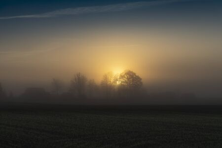 Early morning landscape with sunrise on the field. Distant tree silhouettes visible in dense fog, backlit with rising sun
