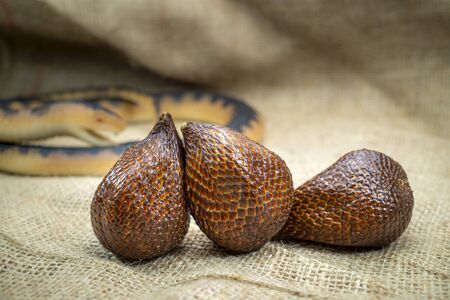Snake fruit, technically known as salak fruit or salacca zalacca on a sackcloth fabric background Archivio Fotografico