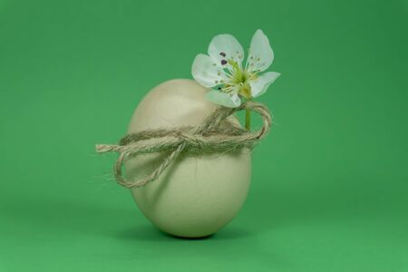 Fresh hens egg tied with rustic twine with an inflorescence of pretty white spring flowers over a green background with vignette conceptual of Easter