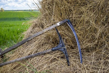 Rake and scythe on dried straw in an agricultural field in spring viewed in close up on the tools