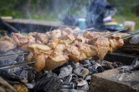 Meat kebabs on metal skewers cooking over the hot coals of a barbecue fire with rising steam or smoke in close up outdoors in a park or garden