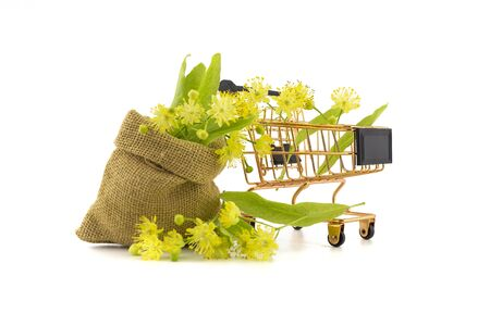 Wire shopping basket and small hessian bag of freshly picked yellow linden flowers and leaves, also called tilia and lime over a white background