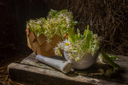 Pestle and mortar and bowl filled with fresh linden flowers and leaves for medicinal use on an old rustic workbench or table in shadows