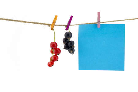 Fresh fruit and and blank sticky note hanging from clothes pegs on a rope with a red and black currants isolated on white with copyspace
