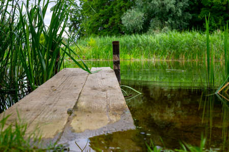 Old rustic wooden jetty on a tranquil lake with reeds and wild grasses on the bank and reflections on the water 版權商用圖片