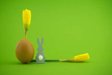 Creative Easter holiday or spring background with Narcissus flowers growing from eggshells and Easter Rabbit figure over a green background with free copy space for text