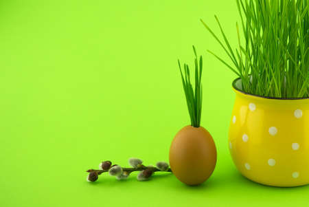 Creative Easter or spring holiday background with wheat seedlings growing from eggshells, yellow cup and willow branch over a green background with free copy space for text 스톡 콘텐츠