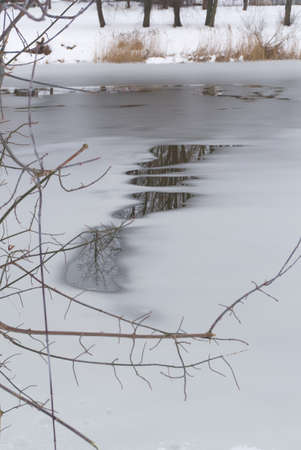 Thawing water in a frozen pond or lake in early spring collecting on the surface of the ice with reflections of the surrounding trees in a concept of the seasons