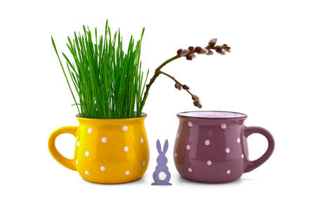 Wheat seedlings growing from yellow cup with pussy willow branch and Easter Rabbit figure isolated on white background