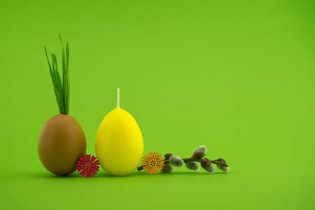 Creative Easter holiday or spring background with wheat seedlings growing from eggshells, yellow egg shaped candle and pussy willow branch over a green background with free copy space for text