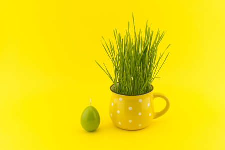 Wheat seedlings growing from yellow cup and green egg shaped candle isolated on yellow background with copy space for text