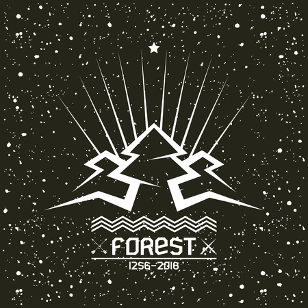 pine forest: Pine forest in geometric lines style with texture. White print on a black background
